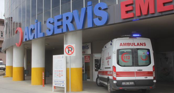 7 kişi kene ısırması sonucu hastanelik oldu