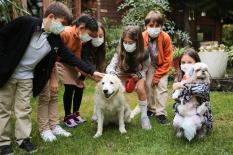 Doğa'nın hayvansever öğrencileri sevimli dostları için iş başında